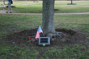 Memorial tree for Christa McAuliffe at Johnson Space Center
